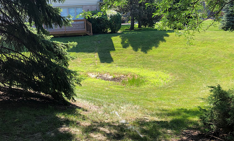 lawn of home before renovation