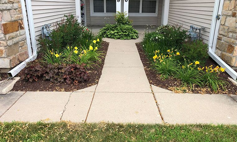 new sidewalk and plants in front of home